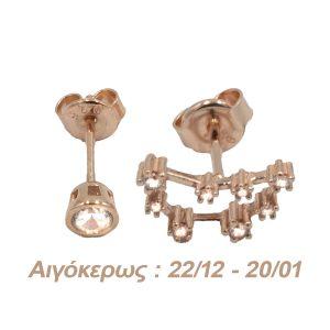 Σκουλαρίκια Αυτιού Ασημένια με Επιχρύσωμα και Ζιργκόν – AG10