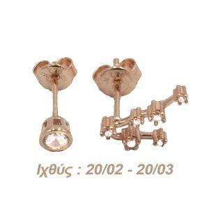 Σκουλαρίκια Αυτιού Ασημένια με Επιχρύσωμα και Ζιργκόν – AG12