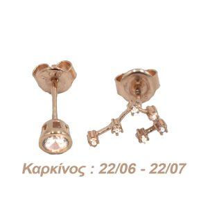 Σκουλαρίκια Αυτιού Ασημένια με Επιχρύσωμα και Ζιργκόν – AG4