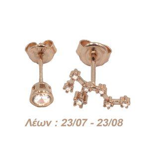Σκουλαρίκια Αυτιού Ασημένια με Επιχρύσωμα και Ζιργκόν – AG5