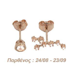 Σκουλαρίκια Αυτιού Ασημένια με Επιχρύσωμα και Ζιργκόν - AG6