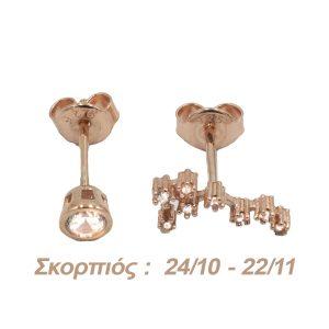 Σκουλαρίκια Αυτιού Ασημένια με Επιχρύσωμα και Ζιργκόν – AG8