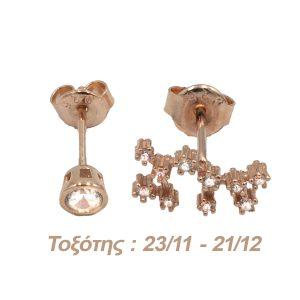 Σκουλαρίκια Αυτιού Ασημένια με Επιχρύσωμα και Ζιργκόν – AG9
