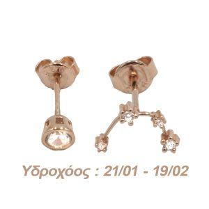 Σκουλαρίκια Αυτιού Ασημένια με Επιχρύσωμα και Ζιργκόν – AG11