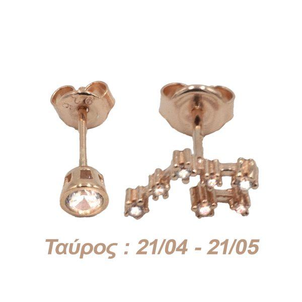 Σκουλαρίκια Αυτιού Ασημένια με Επιχρύσωμα και Ζιργκόν – AG2
